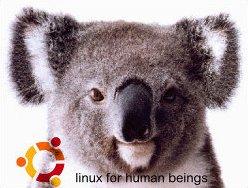 karmic-koala
